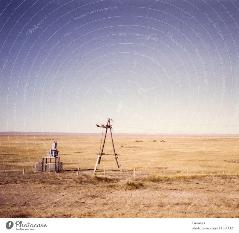 End of Line Landschaft Urelemente Erde Sand Himmel Wolkenloser Himmel Steppe Wüste Gobi Beginn Freiheit Unendlichkeit Grasland Leitung Elektrizität Strommast