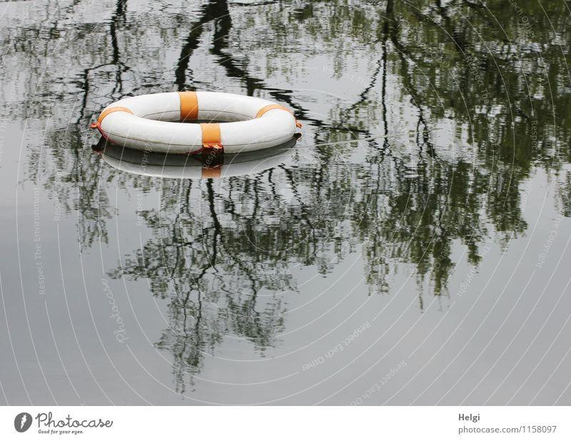 Rettung... Natur Wasser weiß Baum ruhig schwarz Umwelt grau außergewöhnlich Schwimmen & Baden liegen orange bedrohlich rund Sicherheit Kunststoff