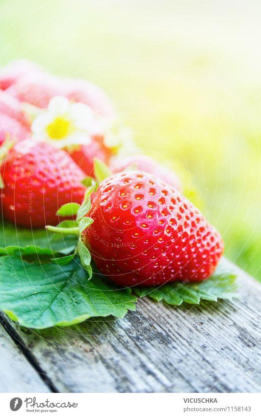 Erdbeeren Saison Natur Sommer Sonne Blatt Gesunde Ernährung Leben Blüte Stil Hintergrundbild Garten Lebensmittel Frucht Design Schönes Wetter Bioprodukte Beeren