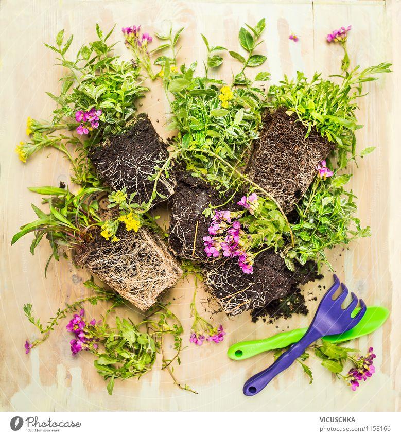 runde rahmen mit schaufel und gartenblumen ein lizenzfreies stock foto von photocase. Black Bedroom Furniture Sets. Home Design Ideas