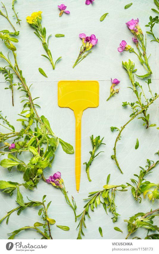 Gelber Pflanzen Schild mit Gartenblumen Natur Sommer Blume Freude gelb Blüte Frühling Herbst Stil Hintergrundbild Lifestyle Design Schilder & Markierungen Fahne