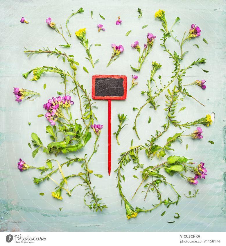 Pflanzen Schild mit pink gelbe Bodendecker Blumen Natur Sommer rot Blatt Liebe Blüte Frühling Herbst Stil Hintergrundbild Garten Freizeit & Hobby Design
