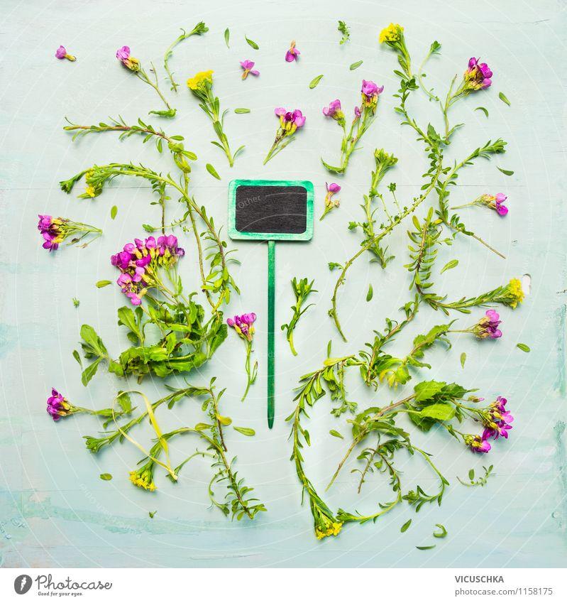 Grüne Pflanzenschild und kleine Gartenblumen Natur Sommer Blume Blatt Frühling Blüte Herbst Stil Hintergrundbild Design Schilder & Markierungen Tisch lernen