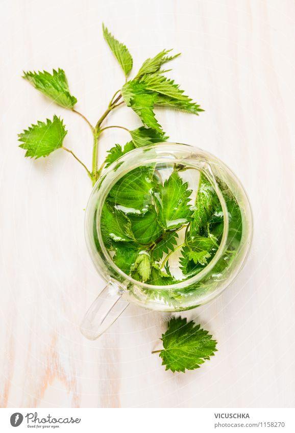 Kräutertee aus frischer Brennessel Natur Pflanze Gesunde Ernährung Leben Stil Gesundheit Lebensmittel Lifestyle Design Ernährung Getränk Duft Medikament Tee Tasse Top