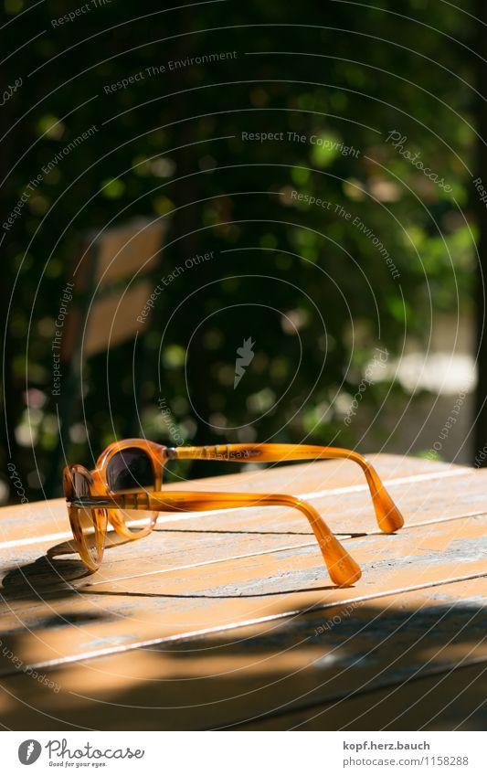 sonnende Brille Lifestyle Ausflug Sommer Sonne Sonnenbrille beobachten Erholung Lebensfreude ästhetisch Zufriedenheit Einsamkeit elegant entdecken