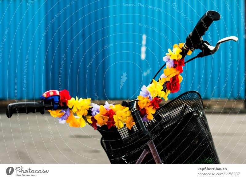 Ich fahre ans Meer. Fahrradfahren Industrieanlage Verkehrsmittel Bewegung Coolness trendy Kitsch trashig Glück Fröhlichkeit Zufriedenheit Lebensfreude