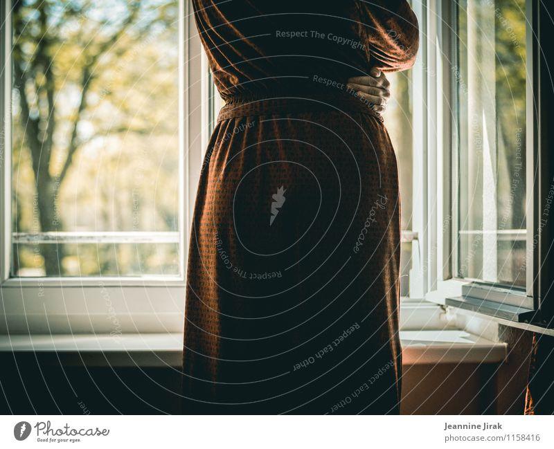 Aussicht Mensch Frau Natur Baum Einsamkeit rot Hand ruhig Fenster Erwachsene Traurigkeit feminin Stimmung Park träumen Raum