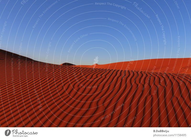 Rote Wellen Ferien & Urlaub & Reisen Einsamkeit rot ruhig Ferne Wärme Sand Erde Wellen ästhetisch Abenteuer entdecken Wüste Wolkenloser Himmel Afrika Dürre