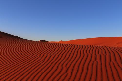 Rote Wellen Ferien & Urlaub & Reisen Einsamkeit rot ruhig Ferne Wärme Sand Erde ästhetisch Abenteuer entdecken Wüste Wolkenloser Himmel Afrika Dürre