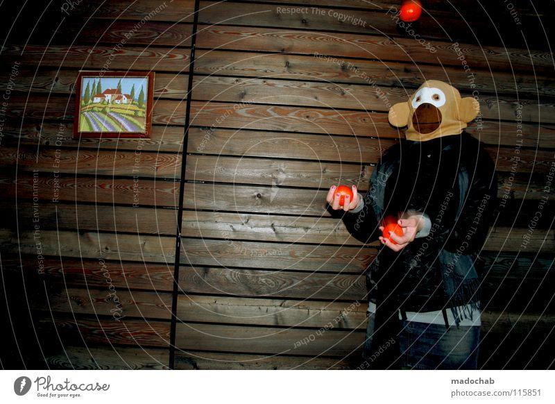 TOLLES ÄFFCHEN Mensch Frau Hand Freude Tier Einsamkeit Haus Ferne kalt Wand Spielen Holz Bewegung Traurigkeit Gebäude lustig