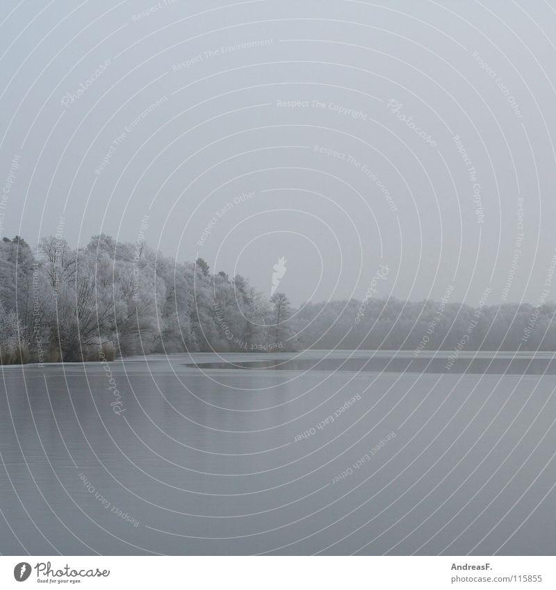 grau in grau See kalt Eis frieren gefroren Winter trist ungemütlich Nebel nass Schneelandschaft Raureif Baum Wald schlechtes Wetter Oktober November Dezember