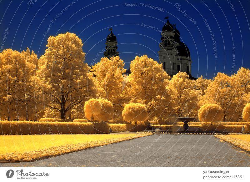 Theatiner Himmel Baum Blume blau Blatt gelb Farbe Wiese Wege & Pfade Religion & Glaube Horizont Brunnen Infrarotaufnahme Farbinfrarot