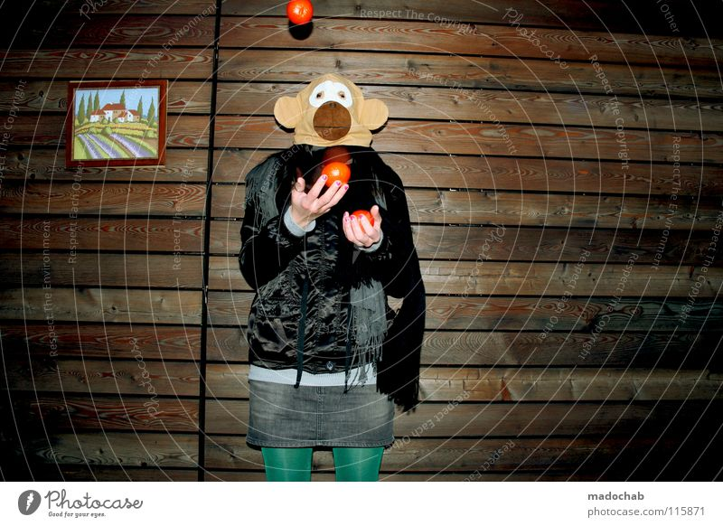 SHOW MUST GO O-HO-HON Mensch Frau Hand Freude Tier Einsamkeit Haus Ferne kalt Wand Holz Bewegung Traurigkeit Gebäude lustig Feste & Feiern