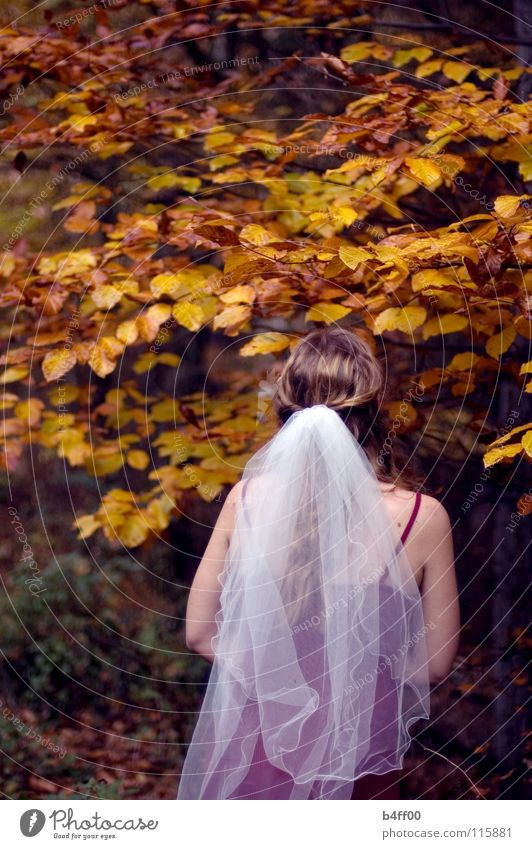 Herbsthochzeit?! Frau weiß Baum rot Blatt Wald gelb Traurigkeit braun orange Hoffnung Trauer Kleid Ast fallen