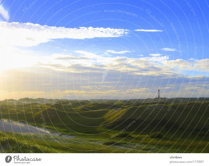 Abenddünen Natur Himmel Meer grün blau Sommer Strand Ferien & Urlaub & Reisen ruhig Wolken Einsamkeit Ferne Erholung Gras Freiheit träumen
