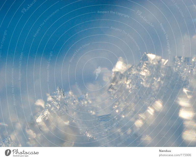 Schneeflöckchen Kristallstrukturen Eis Eisblumen Schneekristall Eiskristall kalt Winter glänzend Makroaufnahme filigran zart schön Klimaschutz Schneeschmelze