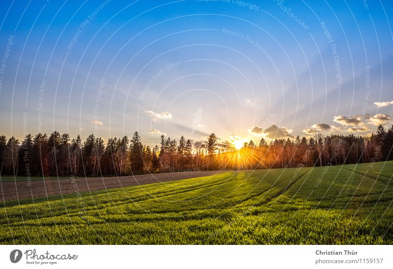 Erste Sonnenstrahlen Natur Ferien & Urlaub & Reisen Sommer Erholung Landschaft ruhig Ferne Wald Berge u. Gebirge Umwelt Leben Frühling Wiese Zufriedenheit