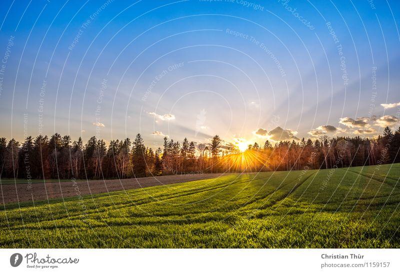Erste Sonnenstrahlen Wellness Leben harmonisch Wohlgefühl Zufriedenheit Sinnesorgane Erholung ruhig Meditation Duft Ferien & Urlaub & Reisen Tourismus Ausflug