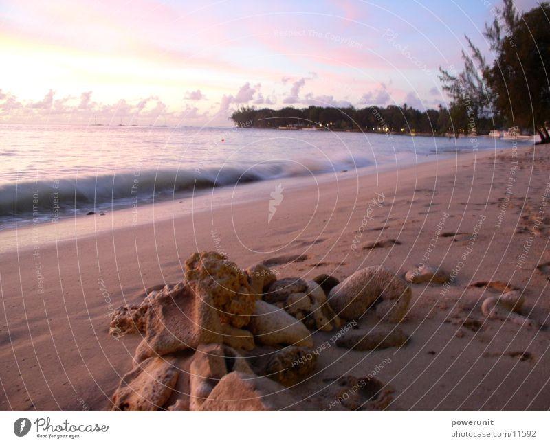 Sonne, Sand und... Meer Strand Wellen Kleine Antillen Abenddämmerung Barbados