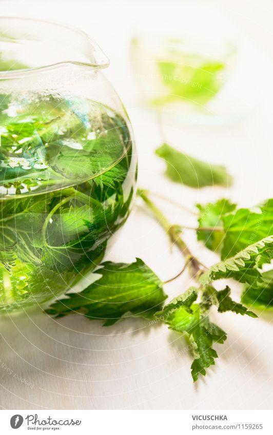 Frische Brennessel Tee in Glas Teekanne Natur Pflanze Gesunde Ernährung Leben Stil Gesundheit Hintergrundbild Garten Lebensmittel Design frisch Getränk