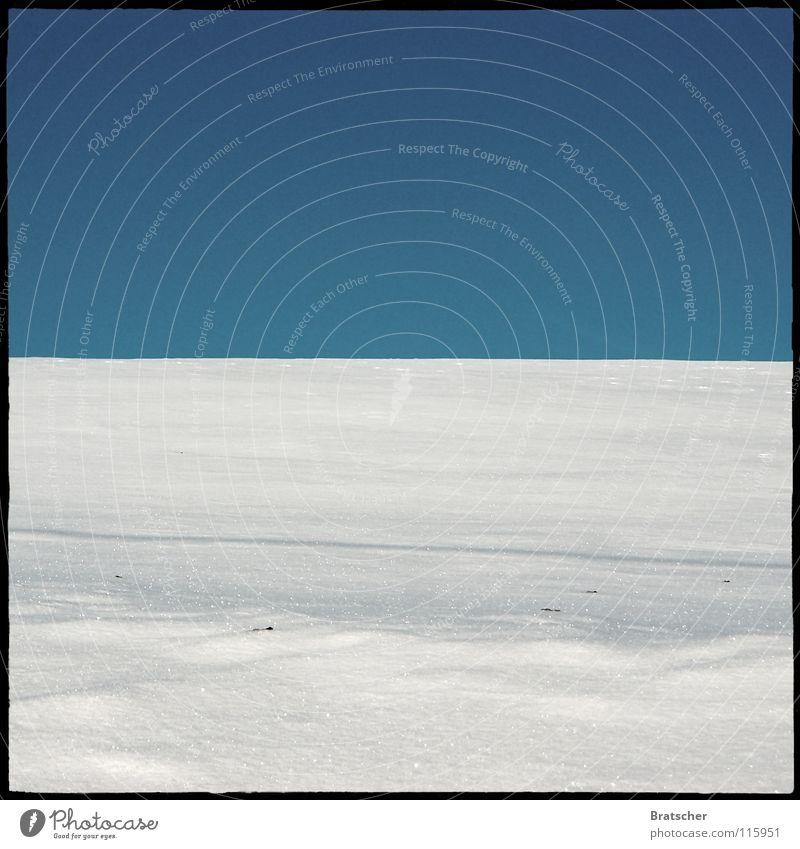 Knut träumt... blau Winter Einsamkeit Farbe Umwelt Landschaft kalt Schnee Horizont Eis Wetter Hintergrundbild Klima leer Textfreiraum Schneelandschaft
