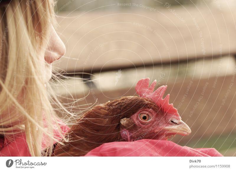 Wilde Hühner Landwirtschaft Forstwirtschaft feminin Mädchen Freundschaft Kindheit Kopf Haare & Frisuren Nase 1 Mensch 8-13 Jahre Garten Gartenbank blond