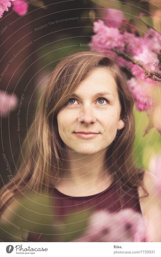 Kirschblüten. Mensch Kind Natur Jugendliche Pflanze schön Sommer Junge Frau Baum rot 18-30 Jahre Erwachsene Gesicht Blüte Frühling natürlich