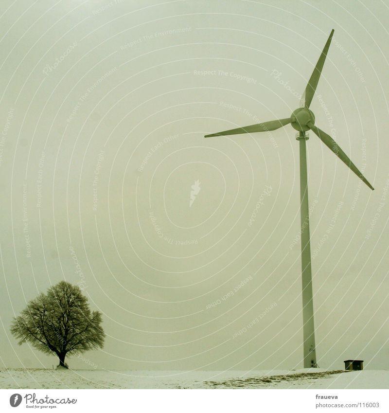 eva Baum Windkraftanlage Elektrizität grau Winter kalt ökologisch Erneuerbare Energie modern Elektrisches Gerät Technik & Technologie Natur Energiewirtschaft