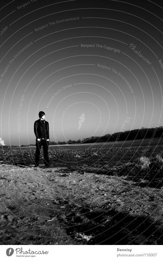 Feld stehen lässig kalt Winter schwarz weiß Stein Baum Schwarzweißfoto robin Coolness Zufriedenheit scchwarz-weiß Freiheit