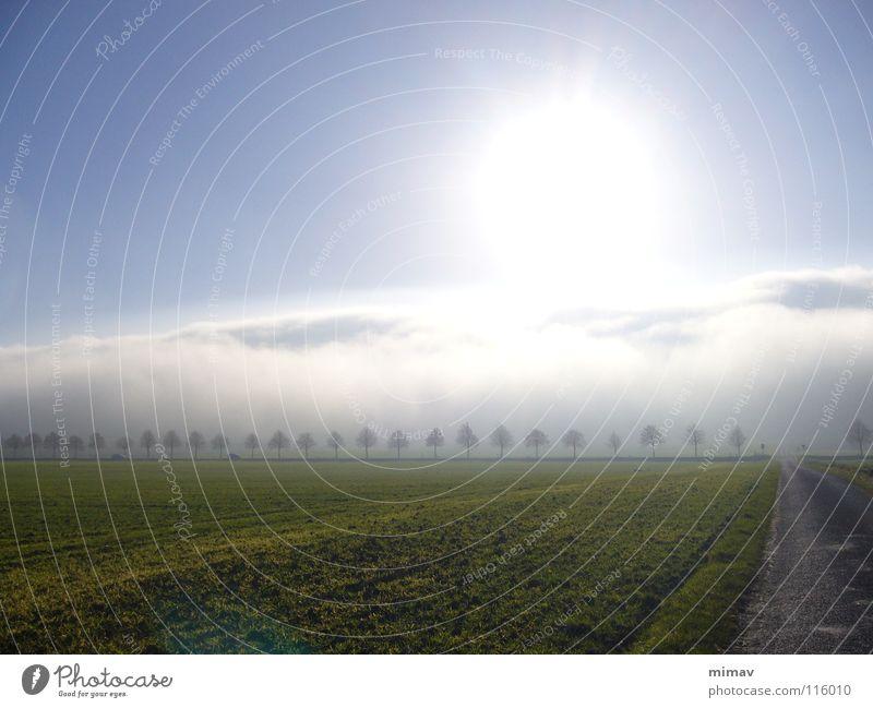 Da war was los an dem Tag Baum Sonne grün Straße Berge u. Gebirge Feld Nebel leer