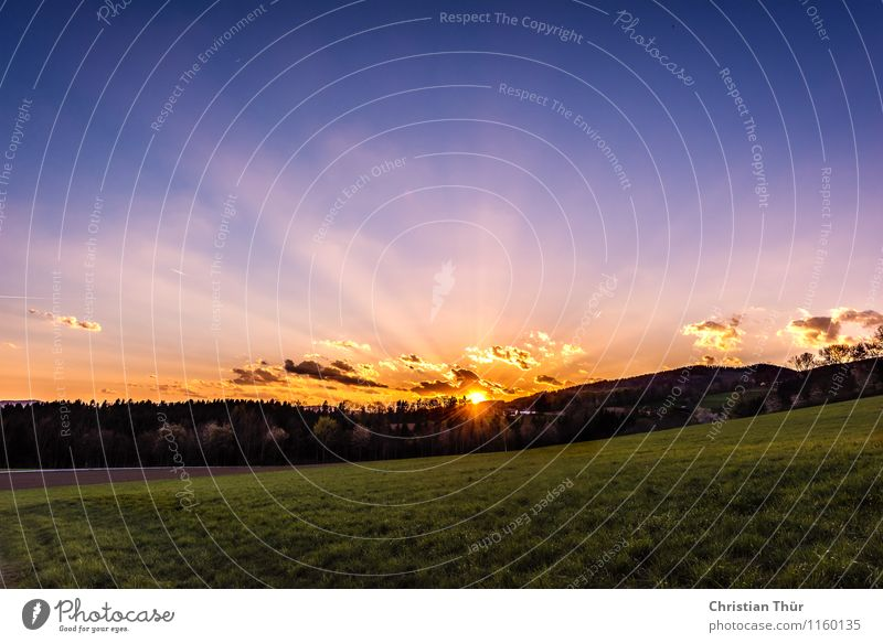 Sonnenstrahlen im Frühjahr Himmel Natur Ferien & Urlaub & Reisen Sommer Erholung Landschaft ruhig Wolken Ferne Berge u. Gebirge Umwelt Leben Frühling Wiese