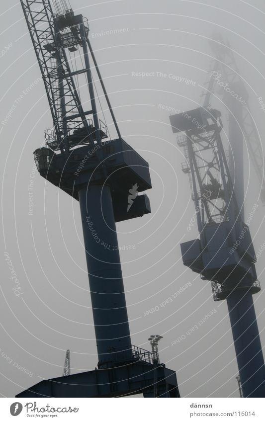 Nebelkran Kran Stahl Baustelle Gewicht schwer Schwerlastkran Hafenkran wuchtig Rostock Warnemünde Kranfahrer Schiffswerft Warnow Küste Lastenzug Pfosten