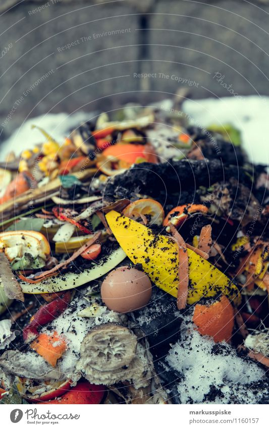 bio müll Lebensmittel Gemüse Salat Salatbeilage Frucht Bioprodukte Vegetarische Ernährung Lifestyle Gesundheit Gesunde Ernährung Freizeit & Hobby