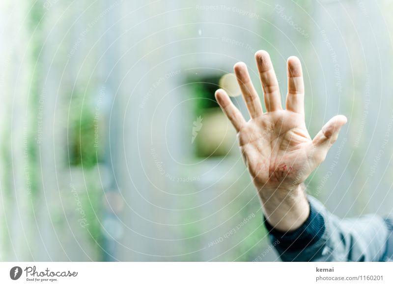 FR UT | Fünf-Zehn-Hundert Mensch Mann blau grün Hand Erwachsene maskulin Finger kaputt Zeichen Hautfalten zeigen Schmerz 5 Wunde Abdruck