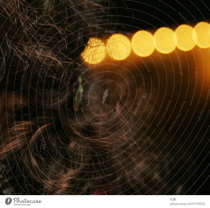 Locken braun Licht Physik Verlauf Kräusel Haarspange glänzend Haare & Frisuren Wärme
