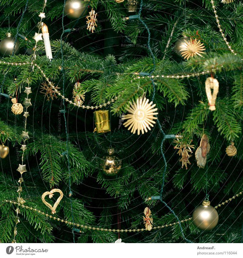 alle jahre wieder Weihnachtsbaum Weihnachten & Advent Weihnachtsdekoration Baum Nadelbaum Tanne Lichterkette grün Winter Christbaumkugel verschönern Dezember