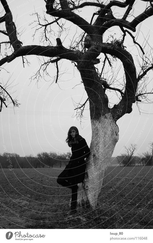 """,,Mais si tu viens n'importe quand..."""" Mensch Baum Winter schwarz Einsamkeit grau Traurigkeit Apfelbaum"""