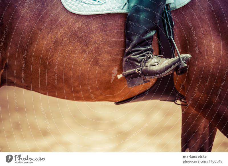Reiter Lifestyle elegant Stil Freude Glück Sport Reitsport reitturnier Springreiten hinternis Steigbügel sporen lederstiefel Sattel Mensch Junge Frau