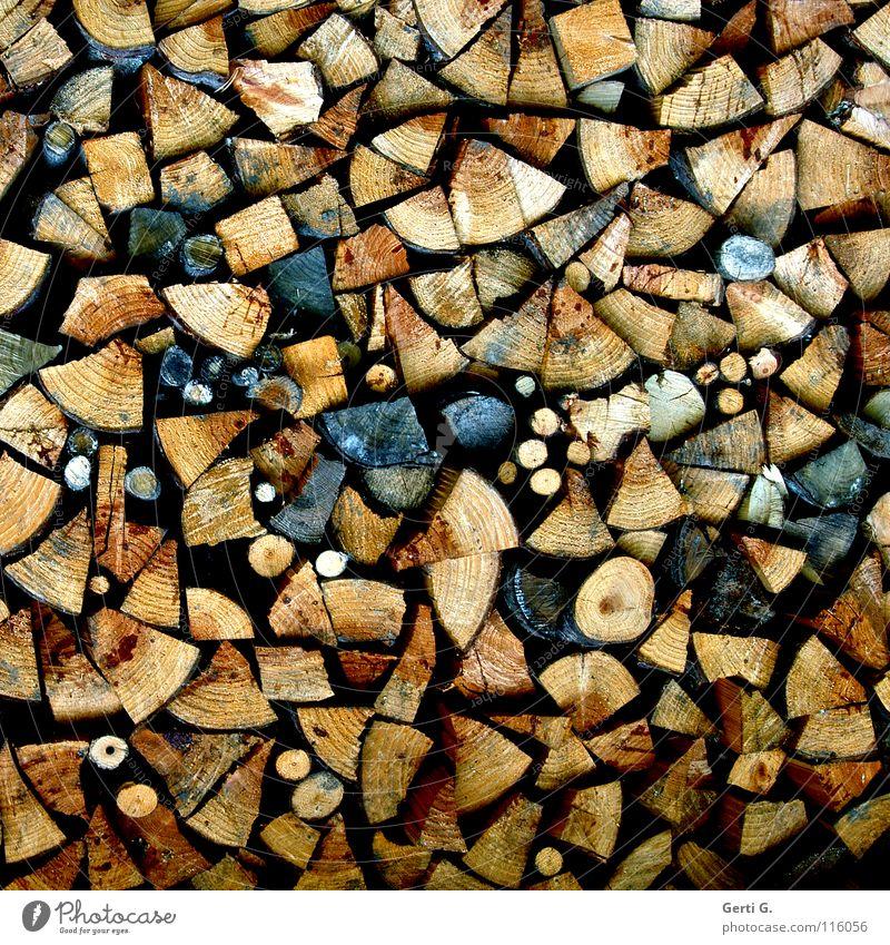 Yvonne sein Holz vor der Hütte Holz Ordnung Ast rund Brand trocken Material Handwerk eckig brennen Stapel Feuerstelle Buche Eiche Maserung Brennholz