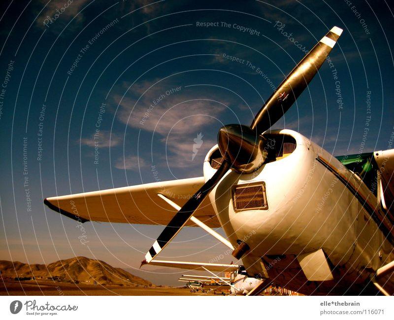 Das Flugzeug II Himmel Sommer Ferien & Urlaub & Reisen Ferne Luftverkehr Fernweh