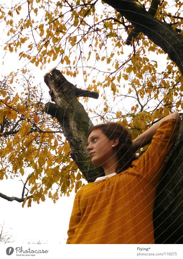 HerbstSingSang Frau Himmel Baum Blatt gelb Körperhaltung Ast Baumstamm Locken Geäst herbstlich