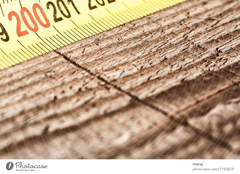 zweihundert Arbeit & Erwerbstätigkeit Beruf Handwerker Tischlerarbeit Werkstatt Arbeitsplatz Baustelle Maßband Holz Ziffern & Zahlen Linie dunkel authentisch