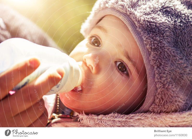 Babyflasche trinken in den ersten Frühlingsstrahlen Sonne ruhig Gesicht Leben Essen klein Stimmung Lifestyle glänzend maskulin Wetter Zufriedenheit frisch