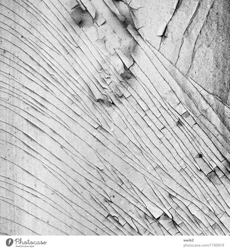 Einschnitt Holz alt dehydrieren dünn authentisch klein nah trist trocken Verfall Vergänglichkeit Zerstörung Zahn der Zeit Hintergrundbild Riss verfallen