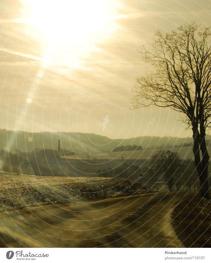 harz-mountains II Himmel blau weiß Baum Winter Wolken Ferne gelb Straße kalt Berge u. Gebirge Schnee Holz Freiheit Stein Horizont