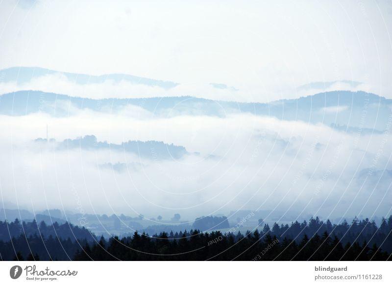 The Fog Natur Ferien & Urlaub & Reisen blau Sommer weiß Landschaft Ferne schwarz Umwelt Berge u. Gebirge Freiheit Wetter Tourismus Nebel Abenteuer Hügel