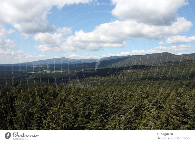 April 2006 – April 2016 Himmel Natur Ferien & Urlaub & Reisen Pflanze blau schön grün Sommer weiß Sonne Erholung Landschaft Wolken Wald schwarz Berge u. Gebirge
