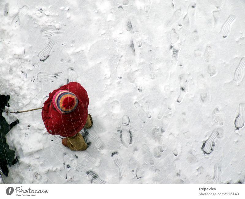 frau und hund I Reihe Winter Hund weiß kalt rot schwarz Dezember Tier Haustier 2 Freundschaft Spaziergang gebunden angekettet Zusammensein Partnerschaft