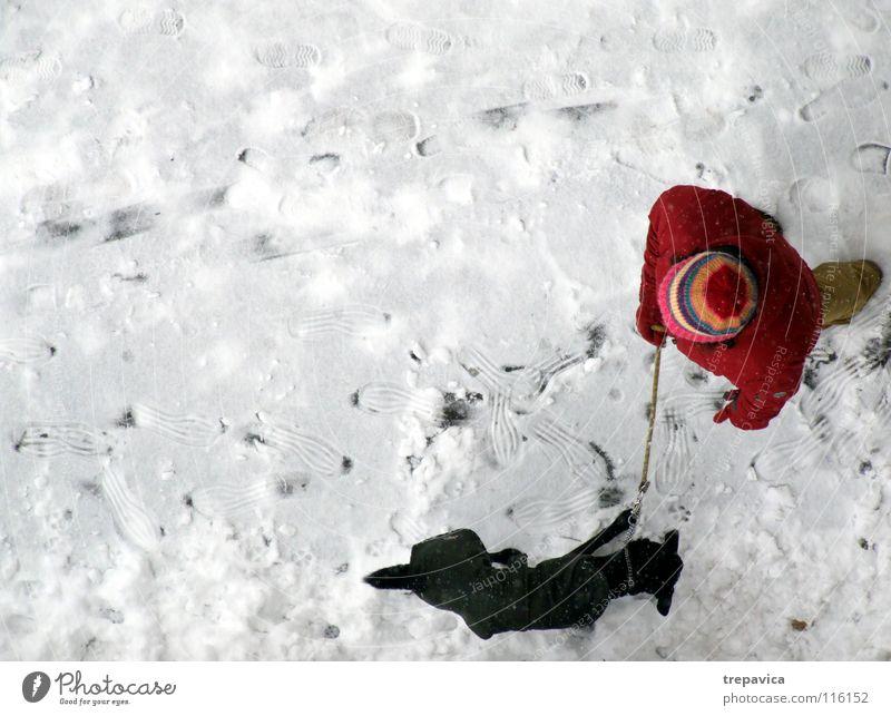 frau und hund III Reihe Winter Hund weiß kalt rot schwarz Dezember Tier Haustier 2 Freundschaft Spaziergang gebunden angekettet Zusammensein Partnerschaft