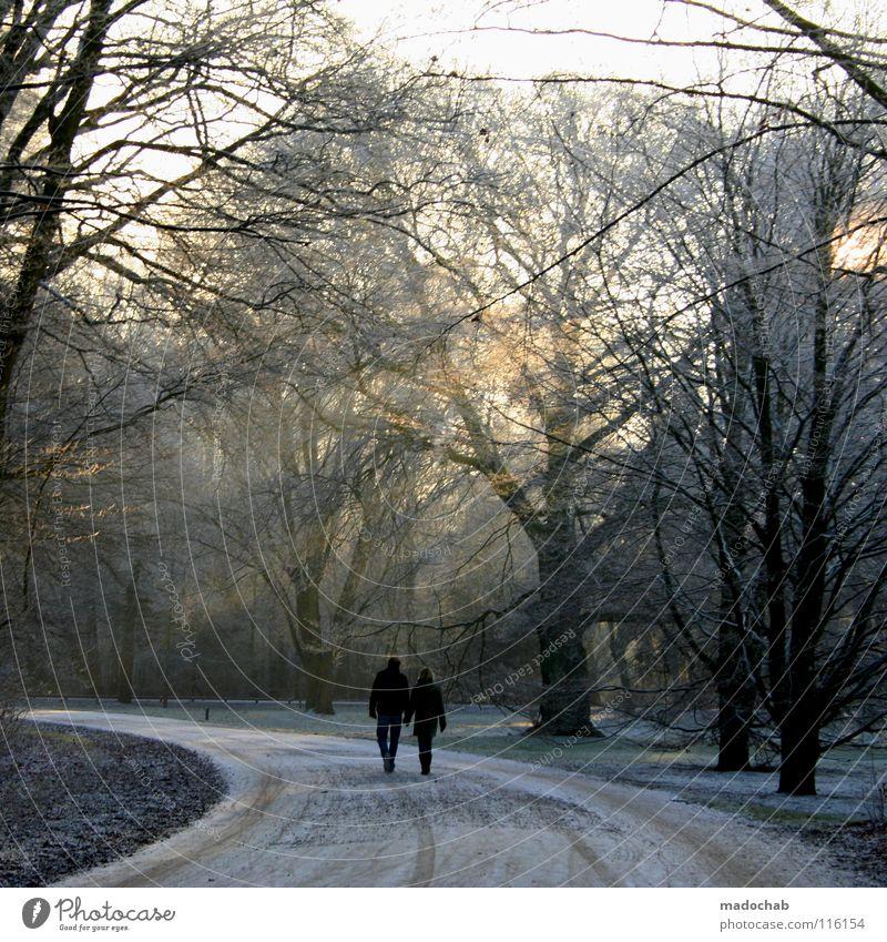 SPAZIERGANG Wald Holzmehl kalt Winter Spaziergang Mann Frau maskulin Sonntag Kitsch Sonnenuntergang schön Verhext träumen Märchen gehen laufen Zusammensein